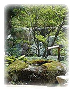 高山にある和室からの眺めも絶景の旅館「焼乃湯」の中庭